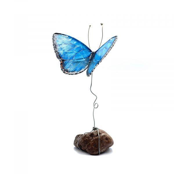 Butterfly_Papier_Mâché_B2